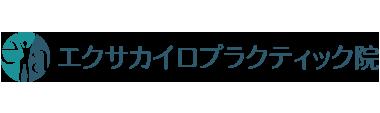 「エクサカイロプラクティック院」柏駅で口コミ評価No.1 ロゴ